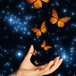 hand with butterflies dreamstime_m_8935839 websize