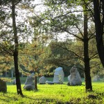 Stone Circle at Nature's Retreat