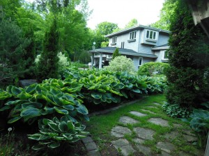 June 8 Gardens 010
