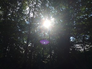 Taken on Sept 4, 2015 by Sonia Smets, in Belgium This is a lovely picture of the Orbs and Divine Light Beings answering your prayers. This is healing energy for you. I believe you are seeing your prayers being answered by Archangel Michael, Archangel Zadkiel and Archangel Gabriel. The little white light is often an elemental that is part of the nature spirits. Archangel Zadkiel's dual focus upon forgiveness and memory can help you heal emotional pain from your past. The Archangel can work with you on releasing old anger or feelings of victimhood so that you can remember and live your Divine life purpose. As you ask Zadkiel for emotional healing, he'll shift your focus away from painful memories and toward the recollection of the beautiful moments of your life. Archangel Zadkiel is a great healer of the mind, and gently leads you by the hand to take responsibility for your own happiness. I have a message from Archangel Michael : The situation is already resolved. This message comes to reassure you that the situation you are inquiring about is happily concluded. This is a lovely picture of the Orbs and Divine Light Beings answering your prayers. This is healing energy for you. I believe you are seeing your prayers being answered by Archangel Michael, Archangel Zadkiel and Archangel Gabriel. The little white light is often an elemental that is part of the nature spirits. Archangel Zadkiel's dual focus upon forgiveness and memory can help you heal emotional pain from your past. The Archangel can work with you on releasing old anger or feelings of victimhood so that you can remember and live your Divine life purpose. As you ask Zadkiel for emotional healing, he'll shift your focus away from painful memories and toward the recollection of the beautiful moments of your life. Archangel Zadkiel is a great healer of the mind, and gently leads you by the hand to take responsibility for your own happiness. I have a message from Archangel Michael : The situation is already resolved. This message comes to reassure you that the situation you are inquiring about is happily concluded.