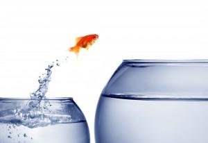 Take the Quantum Leap!